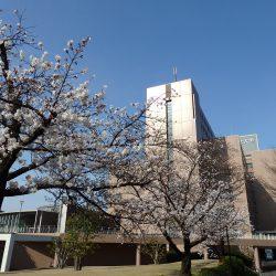 2020/4/2 大学院新入生ガイダンス